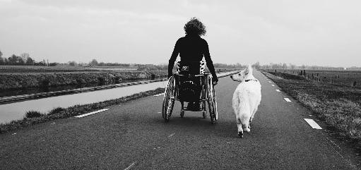 Mijn geleidehond geeft mij weer vrijheid!